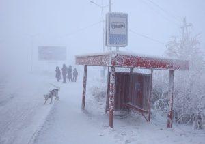 cold4