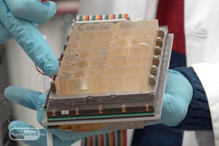 evatar-zhenskiot-reproduktiven-sistem-staven-na-chip