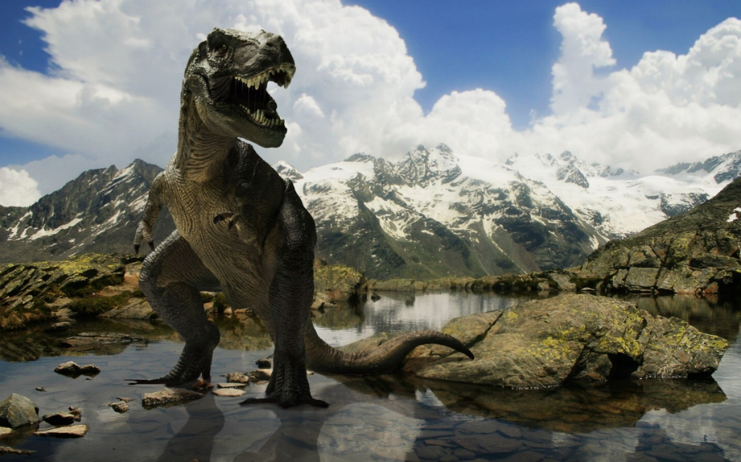 headlineImage.adapt.1460.high.072814_dinosaurs.1406564037732