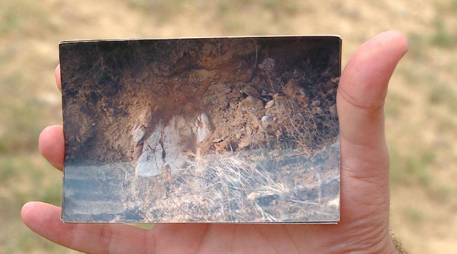фосилен остаток од праисториска жирафа